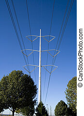 Power Lines over the Trees with blue skies as background