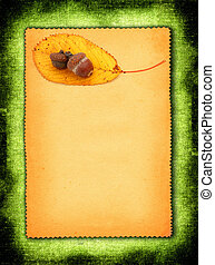 paper with acorns - piece of torn out paper with acorns and...