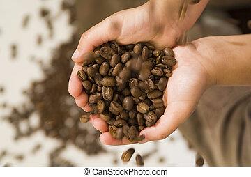 Hands Full of Beans