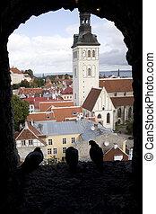Looking out on Tallinn from the Kiek In De Kok