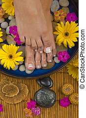 Spa Treatment - Spa treatment with aromatic gerbera daisies,...