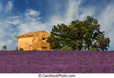 Old barn in Provence - Image shows an old abandoned barn...
