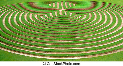 garden maze - beautiful green lawn cut into a garden maze