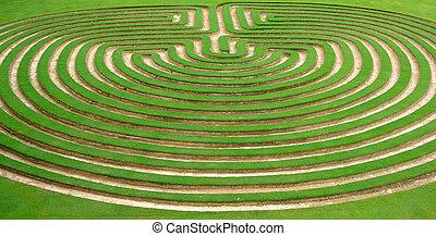 garden maze - beautiful green lawn cut into a garden maze