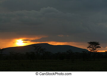 Sunset in Sweet Waters - Sunset in Lewa Park conservancy,...