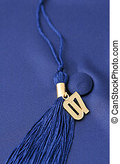 Graduation Cap - Graduation cap and tassle with a gold 07...