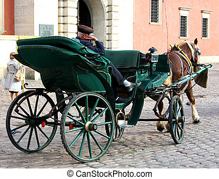 carriage with a coachman - Carriage with a sleeping coachman...