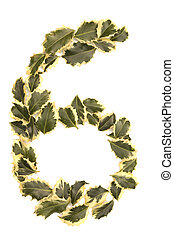 Holly Number Six - Holly Leaves in the form of the digit six...