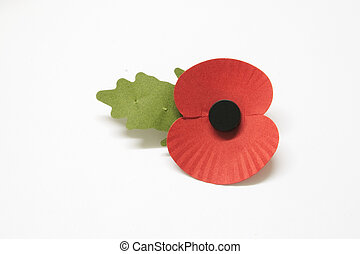 poppy - rememberance poppy over a light background