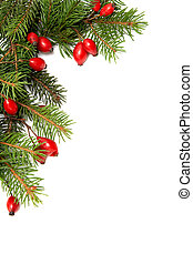 Red-green christmas arrag - Red rose hips and green spruce...