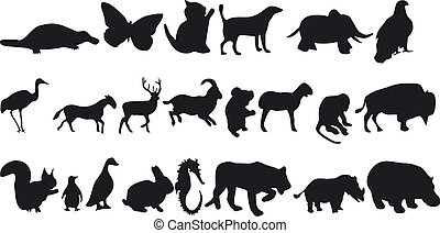 Animal Silhouettes