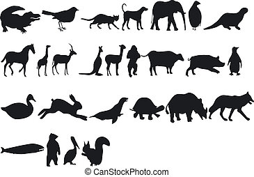 Animal Silhouettes - Illustration of Animal Silhouettes