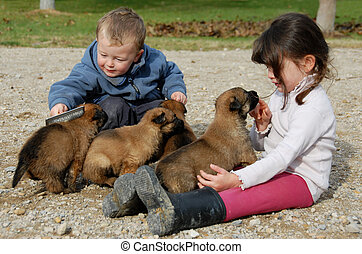 children and puppies - two children and very young puppies...