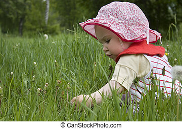 baby in grass