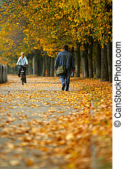 Walk in autumn park - The woman on a bicycle and the man...