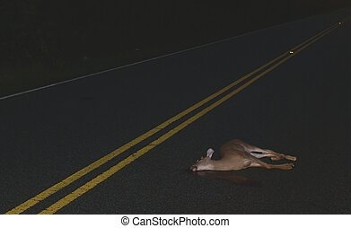 Roadkill - A deer lays dead in the roadway after running...