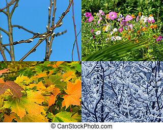 Seasons background - Spring, summer, autumn and winter,...