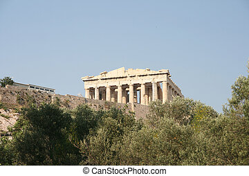 trees and parthenon