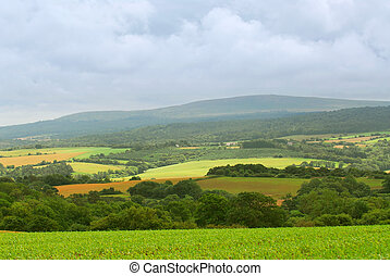 Agricultural landscape - Scenic view on agricultural...