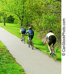 Bicycling in a park - Group of friends bicycling in a summer...