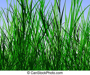 Grass jungle - Design of tall rough grass