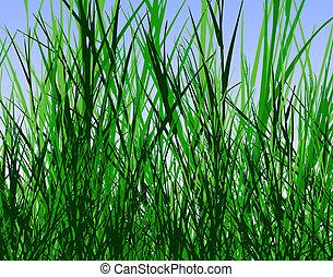 Grass jungle - Design of tall rough grass