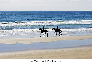 Horse riders - People on the beach riding horses