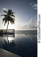 infinity pool with float caribbean sea - luxury infinity...