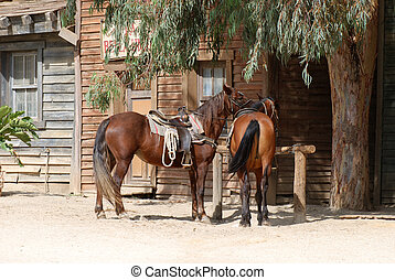 Horses in an old town - Scenery in a traditional American...