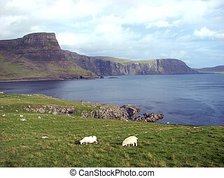 Scottish landscape - Scottish view on the Skye island