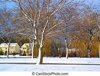 Winter Landscape - Beautiful winter landscape in our...