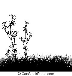 Grass & Plants Silhouette Background - Two floral plants and...