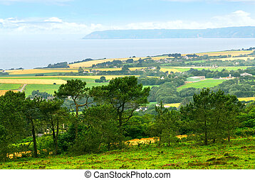Agricultural landscape with scenic ocean view in rural...