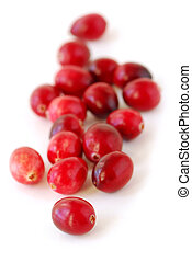 Cranberries macro - Fresh red cranberries macro on white...