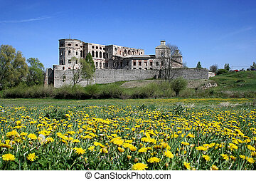 Castle Krzyztopor - Ruin of Polish Mannerist castle...
