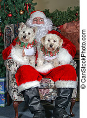 Merry Christmas - Santa and a couple of dogs
