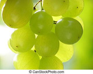 green grapes - Close-up of bunch of green grapes against...