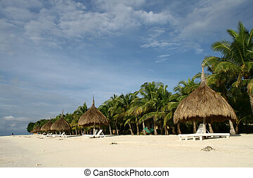 beach resort 2 - rows of nipa hut shade with coconut trees...
