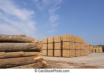 Wooden packing crates production - Sawn trees and wooden...