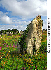 Megalithic monuments in Brittany - Green vines on...