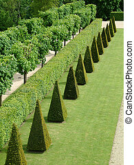 french garden - Observatoire de Meudon-la-for�t, France