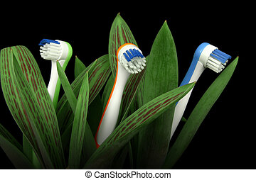 Natural care - Toothbrushes growing like flowers, over...