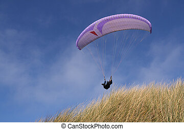 Purple paraglider passing over grass (horizontal)