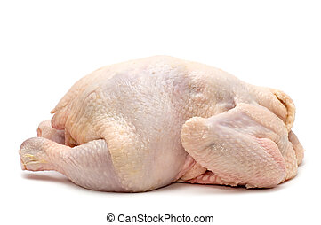 chicken on white background - object on white - food -...
