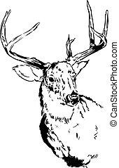 Deer Reindeer Illustration - An original pen and ink...