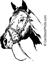 Horse Illustration - An original pen and ink illustration of...