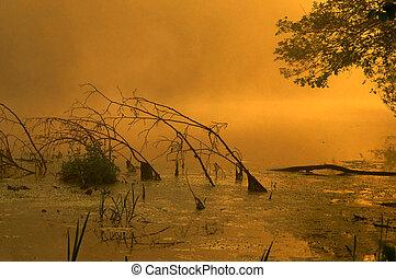 Surise - Poland.Morning fogs on the Narew river.