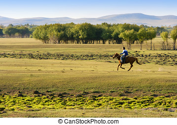 Horse Riding At The Grassland - A man riding horse at the...