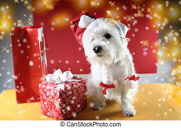 Santa claus - Cute white puppy with present and snowflakes