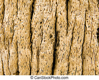 Driftwood - A close-up background of deeply grooved...